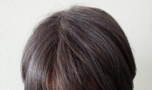 ビューティーン ネイビーブルーで白髪染め 4週間後